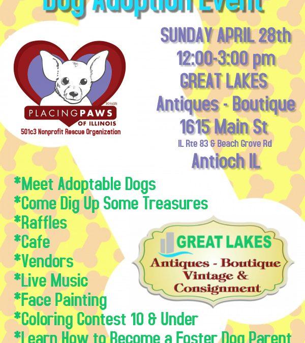 Rescued Treasures Adoption Event - Placing Paws